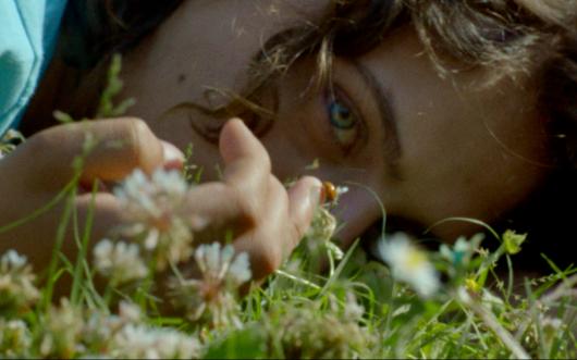 Locandina Trailer del film ARIANNA di Carlo Lavagna